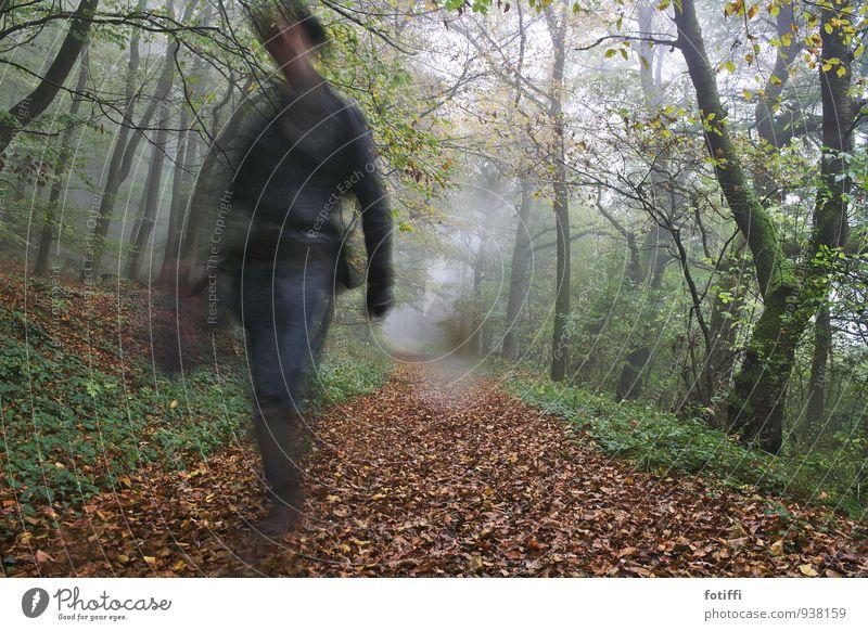 the gunslinger maskulin Mann Erwachsene 1 Mensch 18-30 Jahre Jugendliche Natur Landschaft Pflanze Herbst Klima schlechtes Wetter Efeu gehen laufen rennen