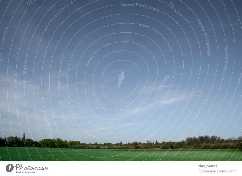 bis zum horizont und zurück² Wolkenformation beruhigend Horizont Baum Wald Feld Ferne gelb grün träumen Erholung Verlauf Sommer Ferien & Urlaub & Reisen