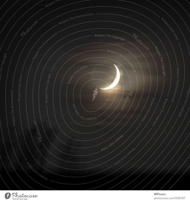nachtlicht Nebel hell Mond Sichelmond Wolken spukhaft leuchten Gedeckte Farben Außenaufnahme Menschenleer Textfreiraum oben Nacht Low Key