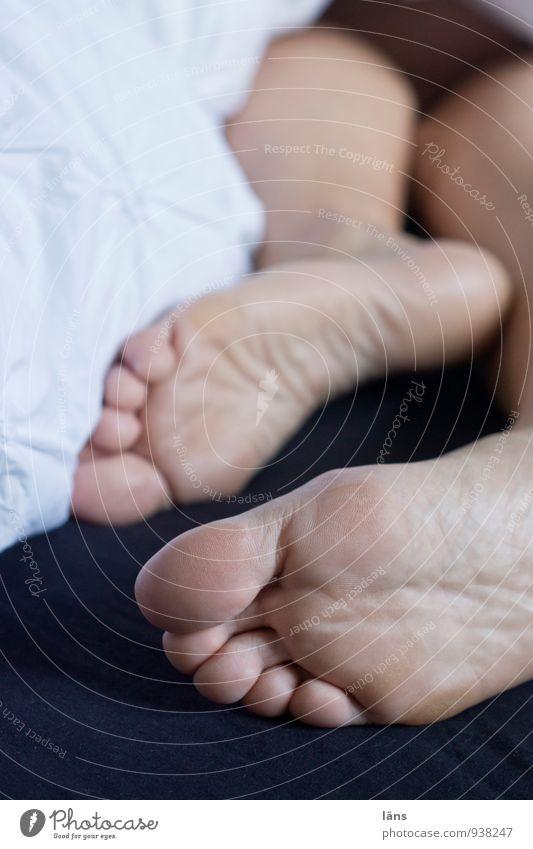 ihr könnt mich mal... Wohlgefühl Zufriedenheit Erholung ruhig Häusliches Leben Schlafzimmer Mensch Haut Fuß 1 liegen schlafen Gelassenheit Bettwäsche Fußsohle