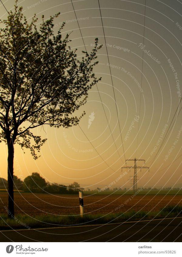 Spannend .. Morgennebel Nebel Feld Elektrizität Strommast Dunst Wolken Farblosigkeit Licht Gras Nebelschleier Hoffnung Tatendrang Schleier Sonnenaufgang grün