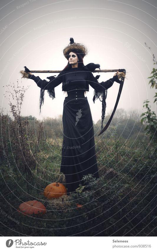 1100 l Herbsternte Mensch Frau Natur dunkel Umwelt Erwachsene Wiese feminin Vogel Sträucher Vergänglichkeit Ernte Wolkenloser Himmel gruselig Karneval