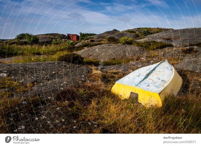 Yellow Offmarine Natur Ferien & Urlaub & Reisen Pflanze Sommer Meer Landschaft Freude Ferne Umwelt gelb Gefühle Küste Glück Felsen Freizeit & Hobby Wellen