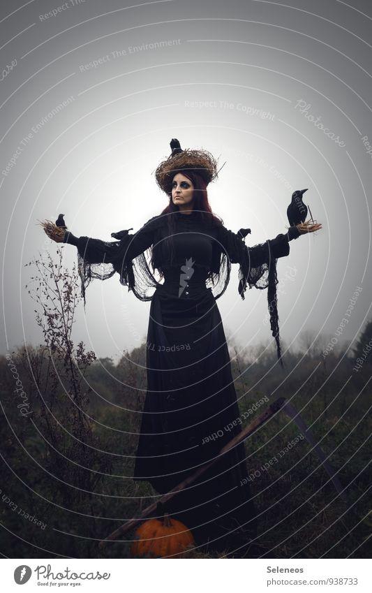 Krähenflüsterin Mensch Frau Himmel Natur Landschaft dunkel Umwelt Erwachsene Herbst Wiese feminin Gras Horizont Feld Nebel Sträucher