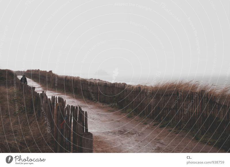 pfad Umwelt Natur Landschaft Urelemente Himmel Klima Wetter schlechtes Wetter Sturm Nebel Regen Nordsee Meer Insel Fußgänger Wege & Pfade ruhig Beginn Horizont