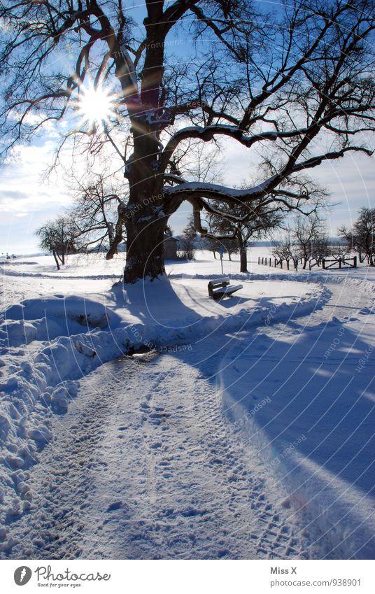 Wintertag in Jungingen Ferien & Urlaub & Reisen Schnee Winterurlaub wandern Natur Sonne Sonnenlicht Wetter Schönes Wetter Eis Frost Baum Park hell kalt Stimmung