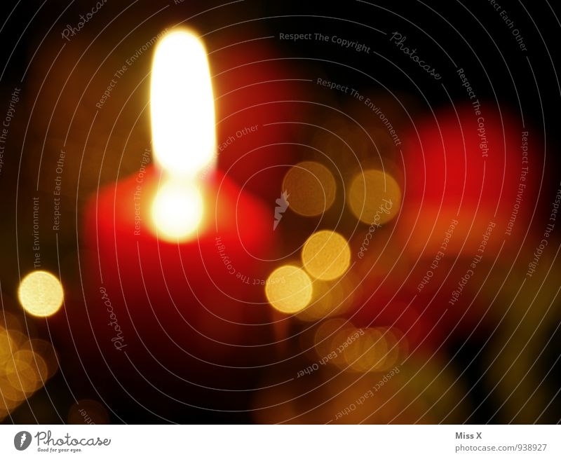 Advent Weihnachten & Advent leuchten Punkt Kerze Vorfreude Weihnachtsdekoration Kerzenschein Adventskranz Weihnachtsbeleuchtung Kerzenflamme