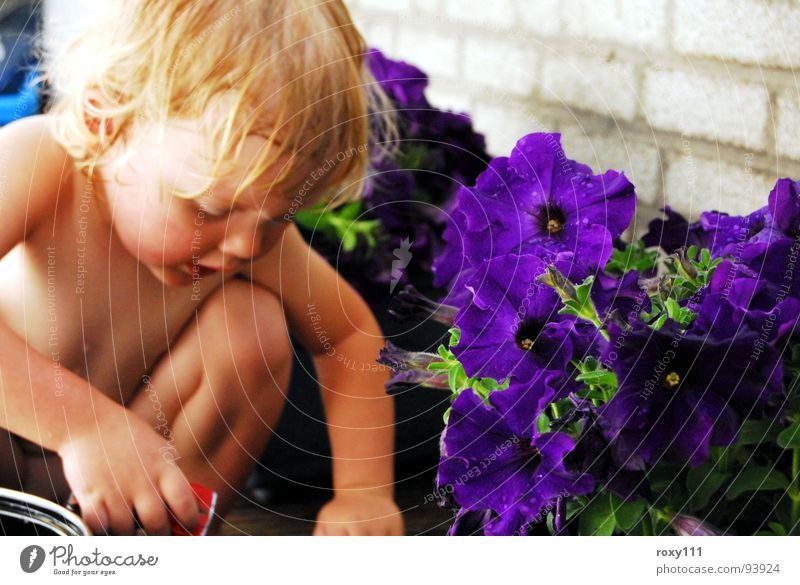 summer Mädchen Sommer Kind child flowers vacantie fun playing lovely.
