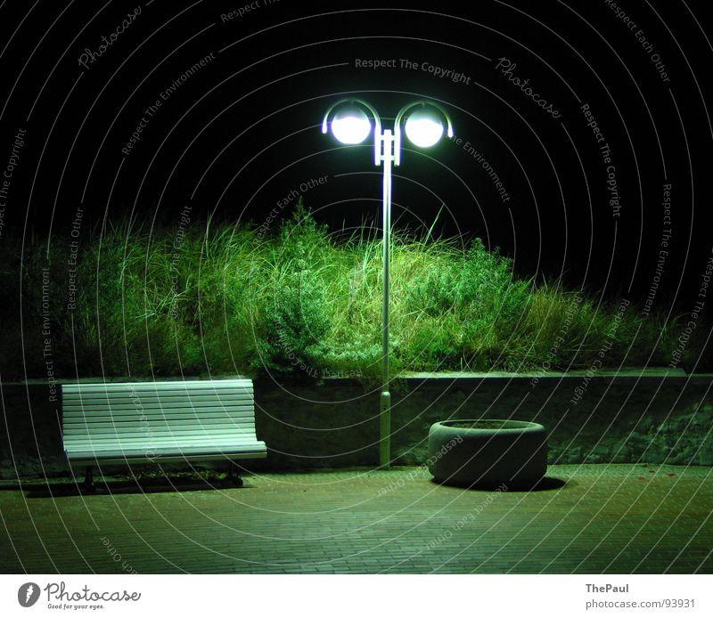Licht ist Grün Laterne Straßenbeleuchtung Sträucher Nacht dunkel Trauer Einsamkeit Zufriedenheit Langzeitbelichtung Außenaufnahme grün satt Garten Park