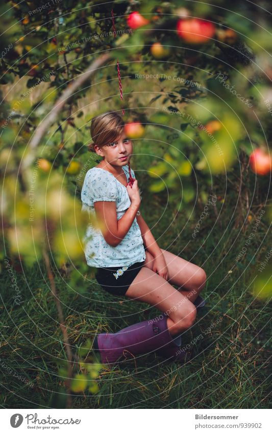 providing childhood memories since the 1930's Frucht Apfel Sommer Garten Mensch feminin Kind Mädchen Kindheit 8-13 Jahre Herbst Baum Gummistiefel blond Zopf