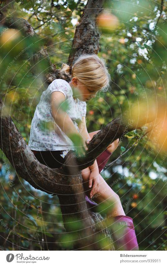 Wenn doch endlich wieder Sommer wär' Freizeit & Hobby Garten Mensch feminin Mädchen Kindheit 1 8-13 Jahre Natur Baum Apfelbaum blond Denken Erholung sitzen