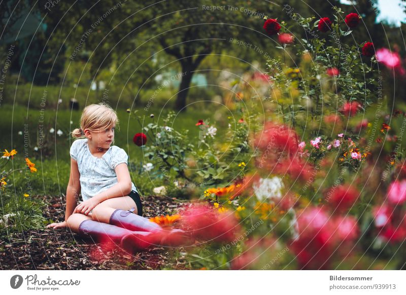 . Mensch Kind Natur Ferien & Urlaub & Reisen grün Sommer Erholung Einsamkeit rot Blume Landschaft Mädchen Wiese feminin Gras Garten