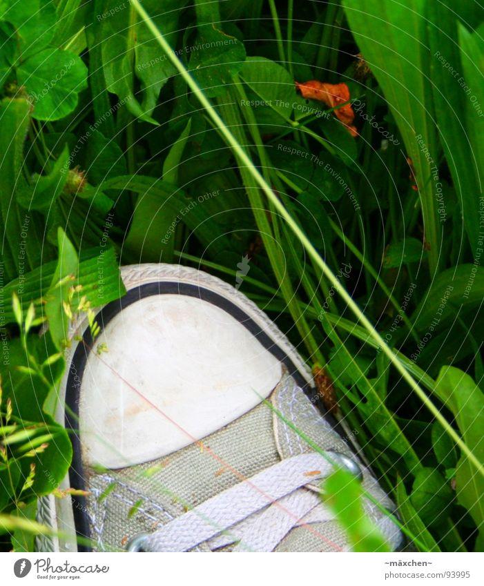 Bio-Chuck weiß grün schön Blatt schwarz grau Gras Schuhe Bekleidung Streifen Stoff silber Halm Chucks Leder Schuhbänder