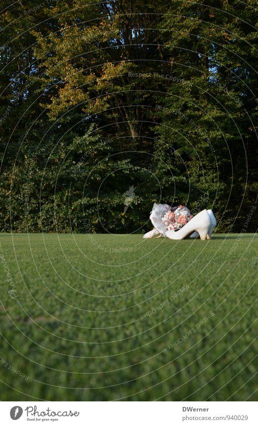 Strauß & Schuhe Natur Pflanze grün Freude Wiese feminin Gras Liebe Stil Feste & Feiern Mode Park Lifestyle elegant Dekoration & Verzierung