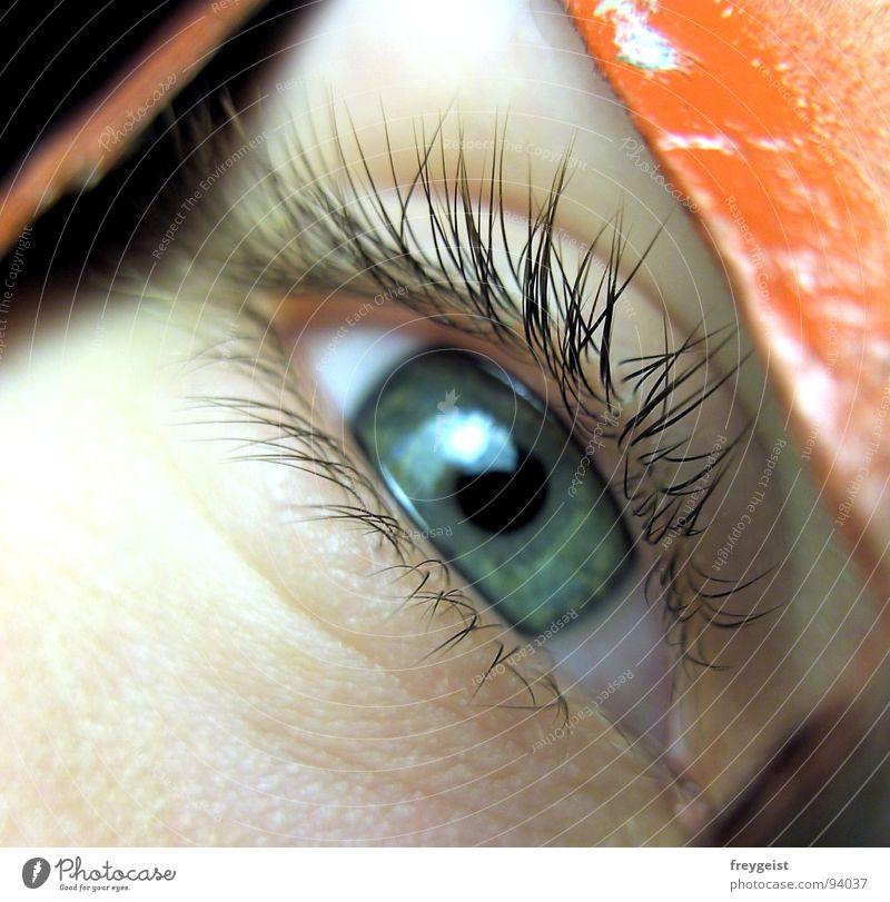 Red rot grün nah Durchblick Wimpern Makroaufnahme Nahaufnahme Auge eye red lashes Haut skin Gesicht face Blick view Stil Mensch