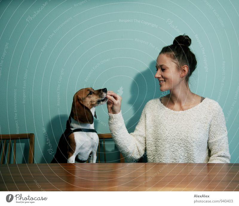 Junge Frau füttert Beagle an einem Tisch in der Küche vor türkiser Wand am Tisch Lebensmittel füttern Snack Küchentisch Jugendliche 18-30 Jahre Erwachsene