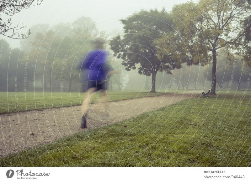 Joggen bei morgendlichem Nebel Lifestyle Winter Sport Mensch Park Fitness Sport-Training Frankfurt am Main Erwachsene Gesundheitswesen morgens sportlich kalt
