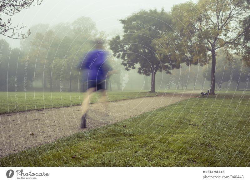 Joggen bei morgendlichem Nebel Mensch Baum Winter kalt Erwachsene Sport Gesundheitswesen Park Lifestyle Aktion Geschwindigkeit Politische Bewegungen Fitness