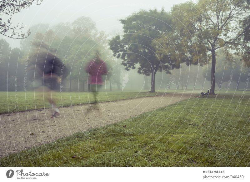 Joggen bei morgendlichem Nebel Lifestyle sportlich Fitness Winter Sport Mensch Park adult healthy morning exercise training runner motion autumn grass activity