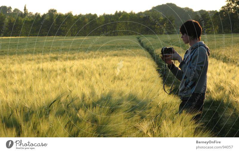 Für eine Hand voll Weizen Jugendliche Himmel Baum grün Wald Feld gold Fotokamera Getreide Fotograf Fotografieren Spuren Traktorspur