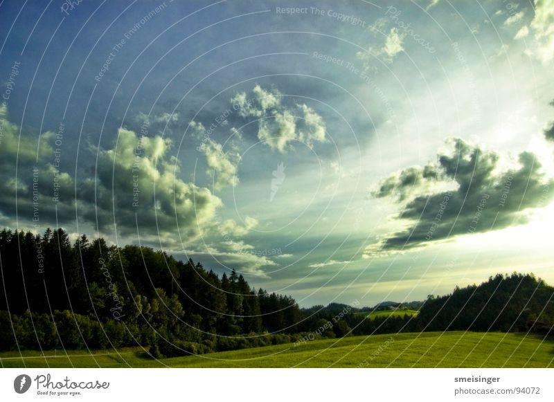 Bob Ross Natur Himmel Baum Sonne grün blau Sommer Wolken Landschaftsformen Ferne Wald Wiese Gras Freiheit Feld natürlich