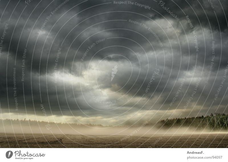 Weltuntergang Feld Kornfeld Sturm Orkan Unwetter Unwetterwarnung Wetterdienst Wolken Sommer Wind Sandsturm Staub aufwirbeln Apokalypse dunkel Erde Gewitter