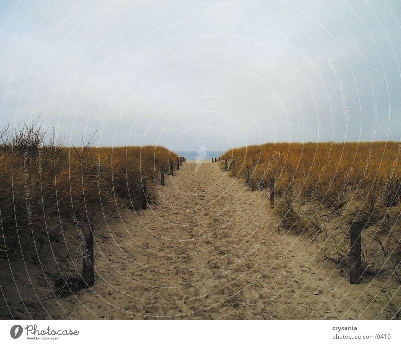 Düne Wasser Meer Strand Stranddüne Ostsee