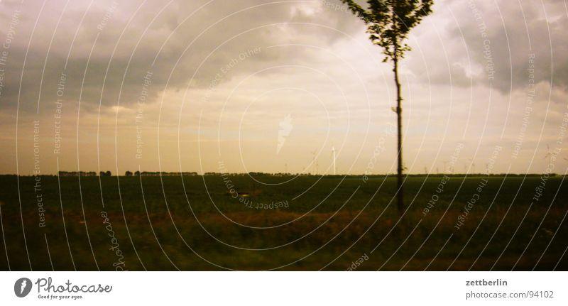 Landstraße Himmel Baum Ferien & Urlaub & Reisen Wolken Straße Wetter Horizont Verkehr Ausflug Energiewirtschaft fahren Windkraftanlage Autobahn Gewitter