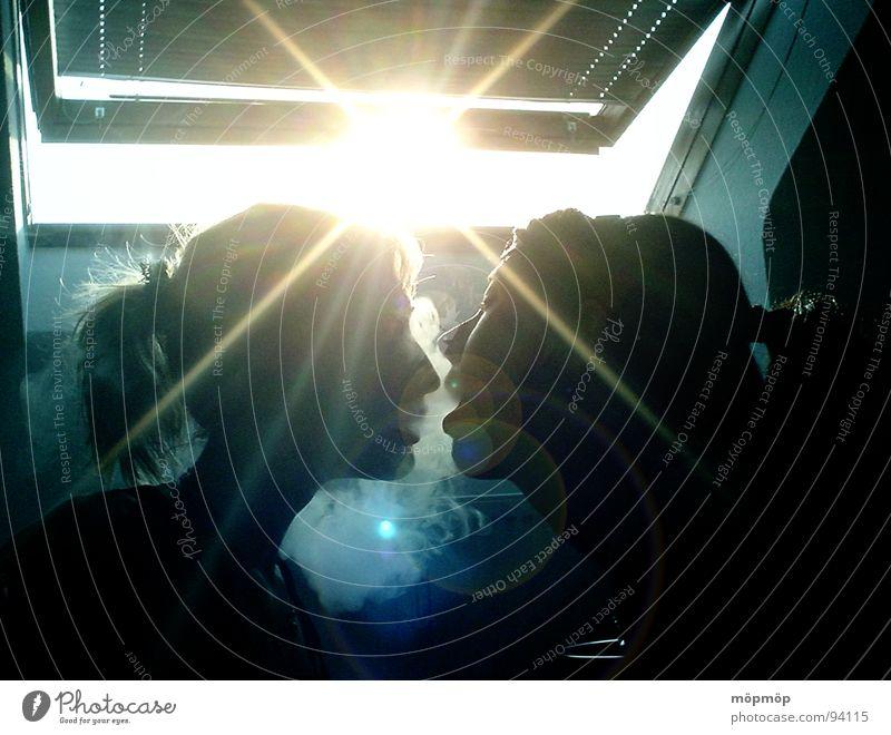 morgäns halb zehn in deutschland ... Licht Gegenlicht Silhouette gelb Frau Sommer Fenster Nebel Schwanz Morgen Sonnenaufgang Sonnenstrahlen Club Profil blau