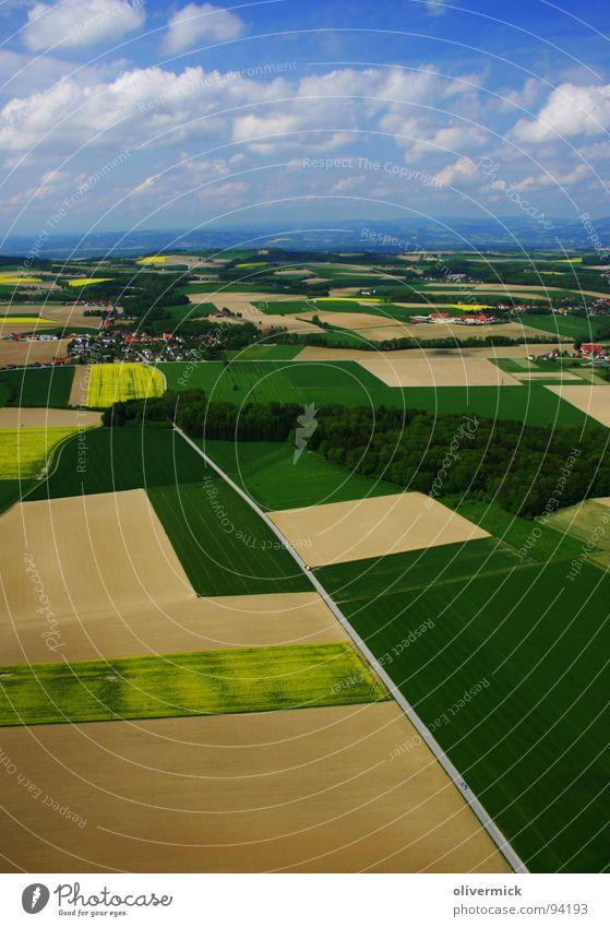 what a wonderful world Raps Rapsfeld Feld grün gelb Wolken Symmetrie schön Himmel blau mehrfarbig