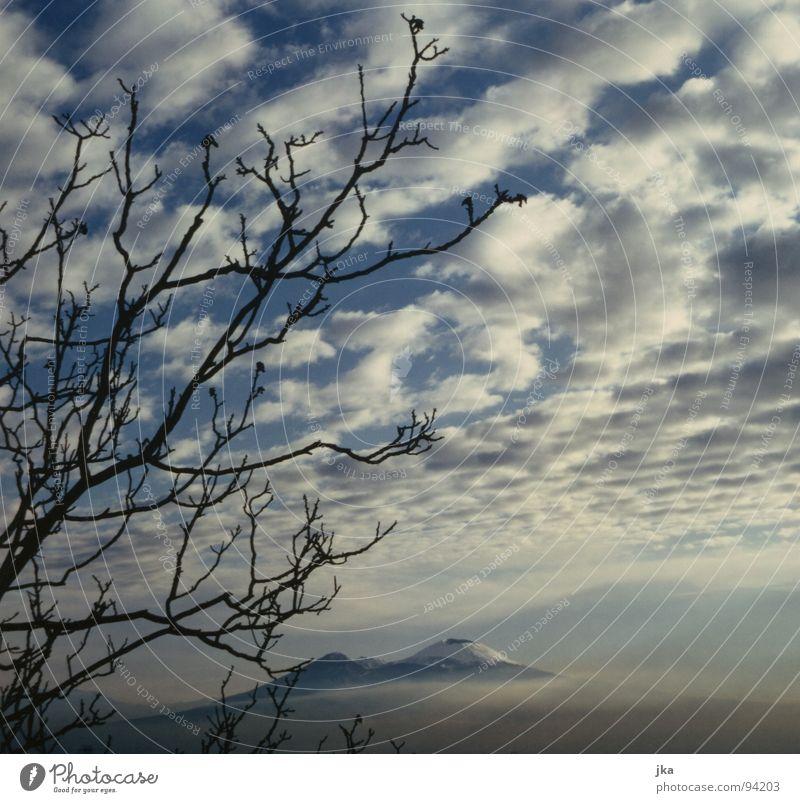 Vesuv, Neapel Italien Wolken Baum Vulkan Natur Schnee Ast blau Landschaft