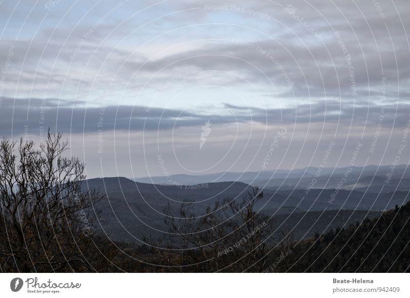 Wenn die Tage kürzer werden ... Himmel Natur Ferien & Urlaub & Reisen blau Erholung Landschaft Wolken schwarz dunkel Berge u. Gebirge Herbst grau Sträucher