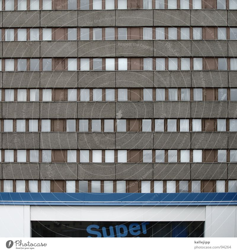 alles... Natur Stadt Farbe Tier Umwelt Fenster Architektur Berlin Kunst Fassade Dach Schulgebäude Bildung Schüler chaotisch Krieg