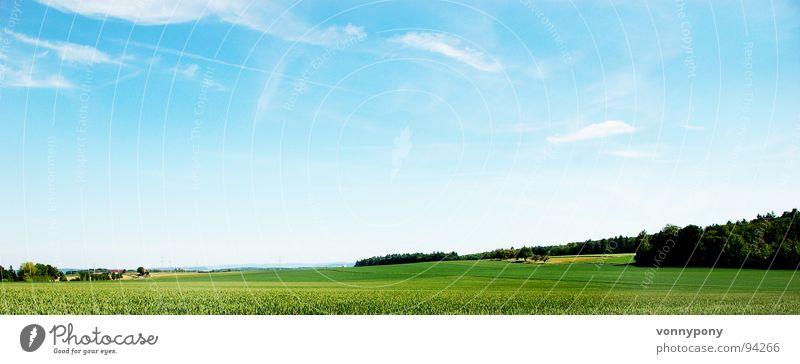 Biofrühstück I schön Himmel Baum Sonne grün blau Sommer ruhig Wolken Ferne Wald Wiese Wärme Landschaft hell Feld
