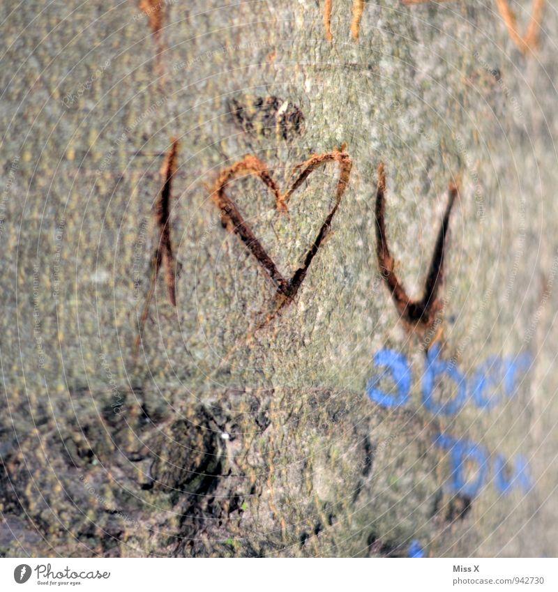 I love U Baum Holz Zeichen Herz Liebe Verliebtheit Romantik Furche Baumstamm Liebesbekundung Liebeserklärung Erinnerung Baumrinde Farbfoto Außenaufnahme