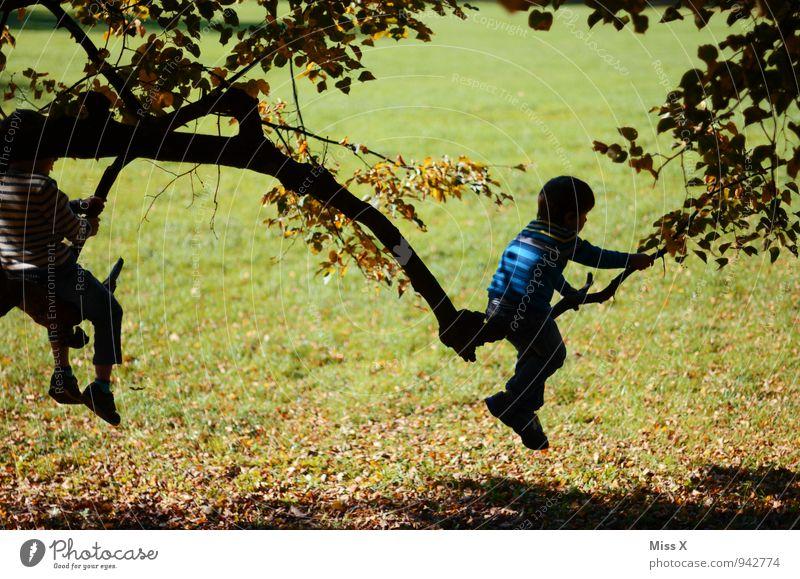 Abenteurer Mensch Kind Baum Freude Gefühle Junge Spielen Garten Stimmung Freundschaft Zusammensein Freizeit & Hobby Idylle Kindheit Ast Abenteuer