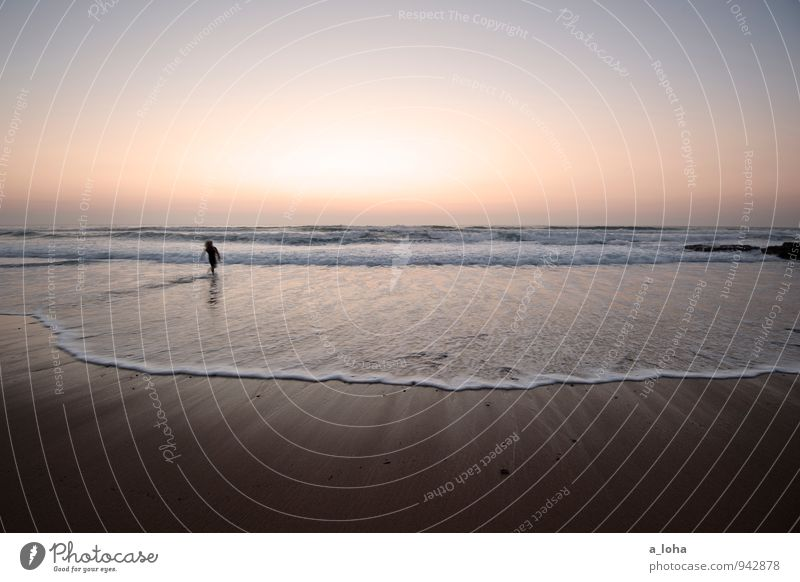 sunset surfer II Mensch Natur Wasser Sommer Meer Strand Ferne Umwelt Bewegung Küste Sand Horizont Lifestyle Wellen laufen Schönes Wetter