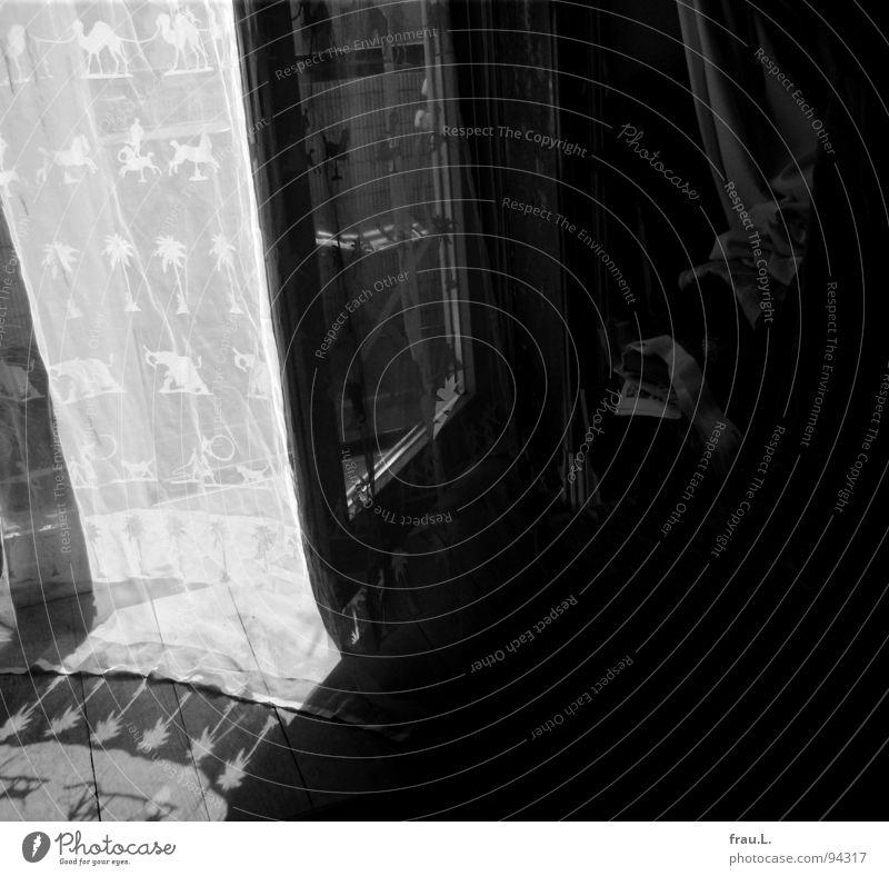 Vorhang Raum Muster Stoff zart Balkontür Sonnenlicht Bodenbelag Holzfußboden Sommer Mittag Sonntag Wohnzimmer Entertainment tranzparent Schatten Balkonstuhl