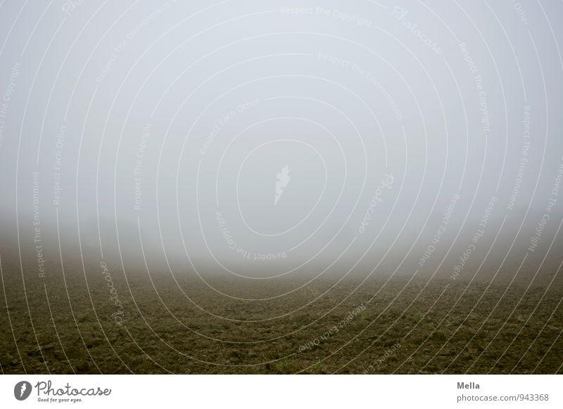 Heute gibt es Suppe Umwelt Natur Landschaft Erde Herbst Winter Klima Wetter Nebel Feld kalt natürlich trist grau Stimmung trüb geschlossen Nebelwand leer Ferne
