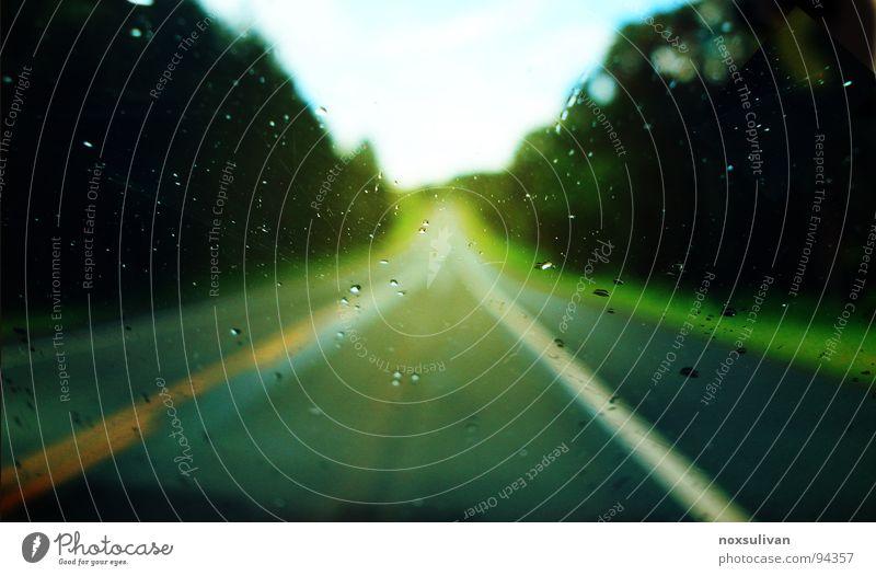 long trip on quiet way grün Ferien & Urlaub & Reisen ruhig Straße Wald dunkel Regen Glas Wind Wassertropfen Schilder & Markierungen Ausflug lang Hügel