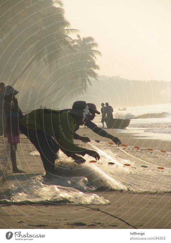 Small Fishing Mann Strand Arbeit & Erwerbstätigkeit Fisch Netz Asien Dienstleistungsgewerbe Palme Vietnam Hochformat