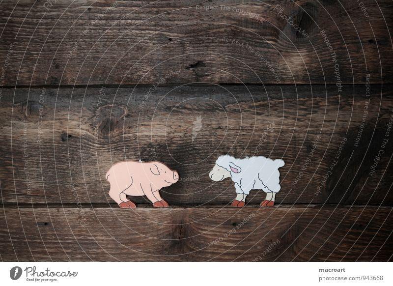 schwein und schaf Tier Hintergrundbild Holz Glück Freundschaft Symbole & Metaphern Holzbrett dick Schaf Verschiedenheit Wolle Schwein üppig (Wuchs)