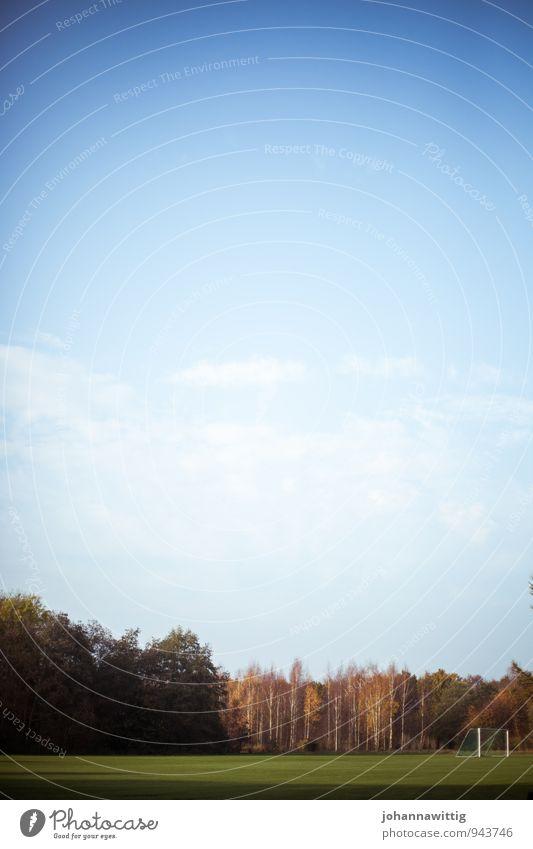 Wiese vor einem Wald Linie gerade Natur einfach schlicht Herbst Blauer Himmel Fußballtor verlassen