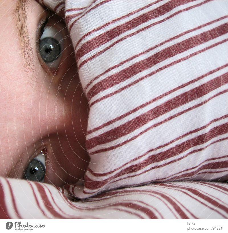 verschleiert geschlafen Frau blau weiß rot Gesicht Erwachsene Auge Nase Streifen verstecken Decke gestreift Kissen Augenbraue Stirn Bettdecke