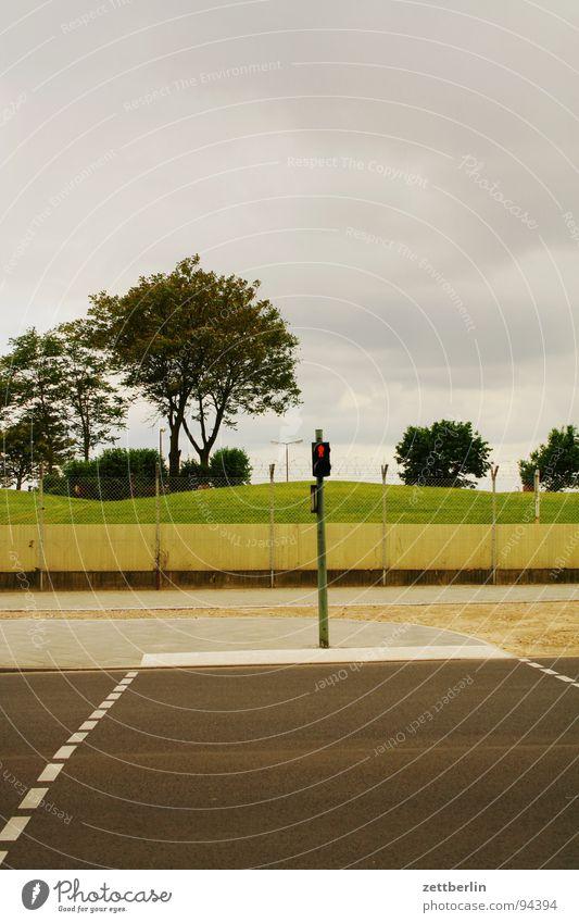 Übergang Fußgänger Fußgängerübergang Ampel rot Asphalt Bürgersteig Straßenverkehr Menschenleer Zaun Barriere Stacheldraht Sicherheit Sperrzone Baum Wolken