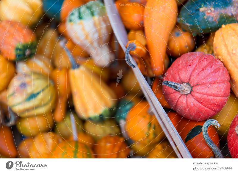 halloween kürbis rot Haus Stil Garten Lebensmittel rosa Wohnung Lifestyle orange Freizeit & Hobby elegant Dekoration & Verzierung ästhetisch Zeichen Gemüse