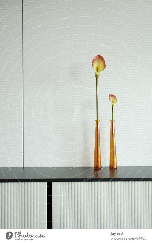 buero_modern weiß Blume hell Dekoration & Verzierung Möbel Vase Ablage