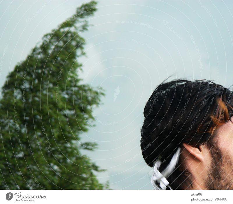 vom winde verweht Baum grün Unwetter Mann schwarz weiß Bart Schuhbänder Ohrläppchen Wind Anziehungskraft Mensch Himmel Schönes Wetter Haare & Frisuren Schnur