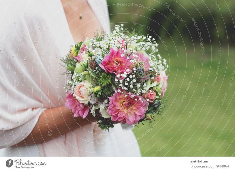 Brautstrauß Mensch Frau Jugendliche Pflanze grün weiß Junge Frau Hand Blume Blatt 18-30 Jahre Erwachsene feminin Liebe Blüte natürlich