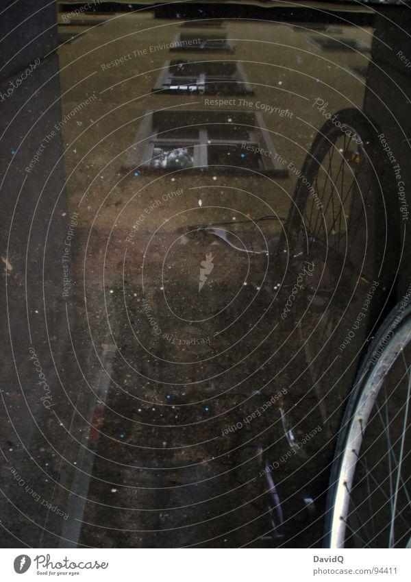 feuchter Keller Fahrrad Felge Pfütze Reflexion & Spiegelung Haus Wand nass dunkel Fahrradkeller Regen Überschwemmung nasse Füße Perspektive Pfützenbild